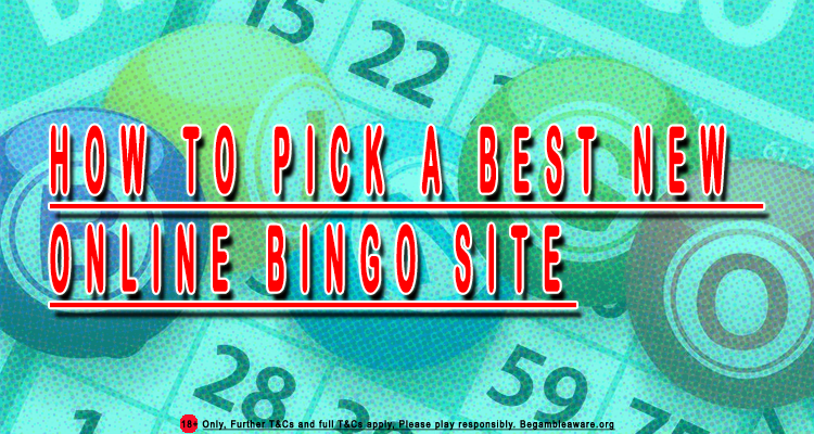 Online Bingo Websites